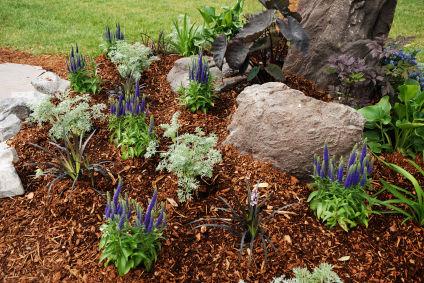 garden-mulch-design | theyearddepot.com